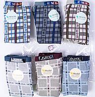 Мужские трусы плавки бамбук EMS 1236 L 46-48. В упаковке 6 трусов