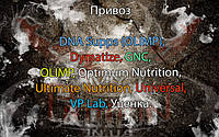 Прибытие: DNA Supps (OLIMP), Dymatize, GNC, OLIMP, Optimum Nutrition, Ultimate Nutrition, Universal, VP Lab, Уценка.