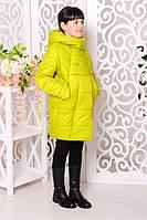 Куртка зимняя для девочки. Лайм. 122-146