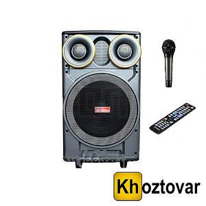 Портативная акустика SS-666 PRO Bluetooth