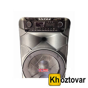 Активная акустическая система SKY SA 888