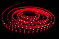 Светодиодная лента красный SMD 3528 120 диодов на метр IP65 герметичная (в силиконе)