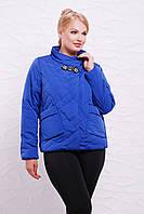 Яркая женская короткая демисезонная куртка без капюшона,большие размеры, цвет электрик Куртка 17-55
