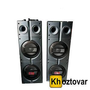 Акустическая система Sky Audio SA-885