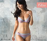 Стильный комплект женского белья пуш-ап (Клео) Melange Chic 2084 9254a4ac655ec