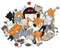 Зооняня (няня для кошки, cat sitter, выезд на дом)