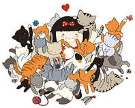 Зооняня (cat sitter няня для кошки выезд на дом)