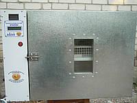 Инкубатор Эталон-100  автоматический  на 100 яиц c резервным питанием от аккумулятора