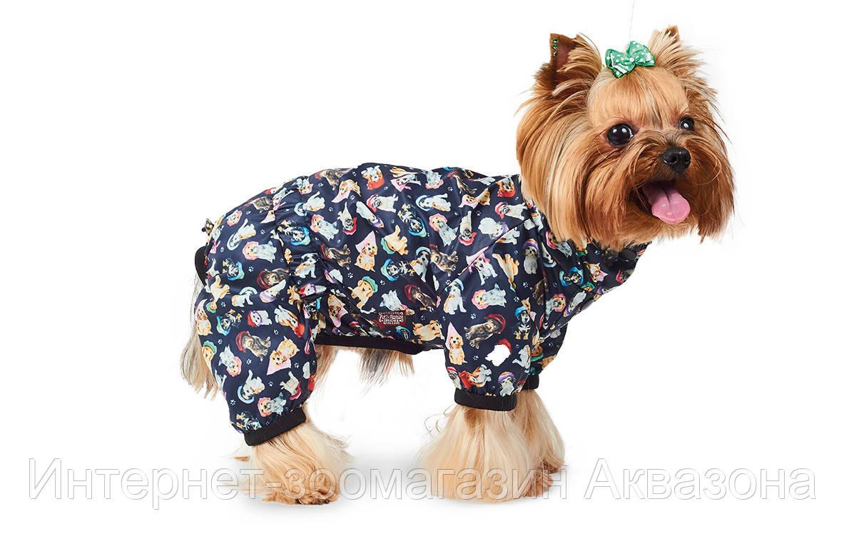 Pet Fashion Дождевик Бердс XS