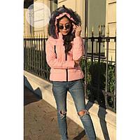 Куртка женская стильная теплая Fashion (холофайбер) пудра,магазин курток