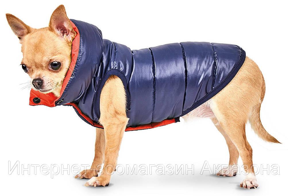 Pet Fashion Жилет Маркиз M-2