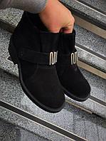Демисезонные ботинки на низком ходу замш на байке