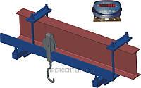 Весы монорельсовые ВИС 150ВП2 до 150 кг (длина монорельса до 500 мм)