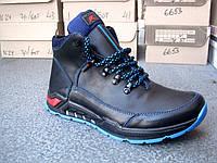 Зимние кожаные мужские ботинки ECCO