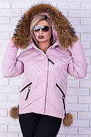 Короткая зимняя куртка с помпонами  Peercat №1726
