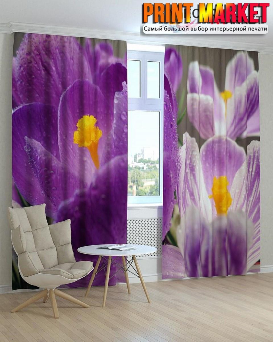 Фотошторы мокрые фиолетовые цветы