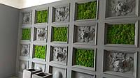 Комбинированная стена из растений и мха