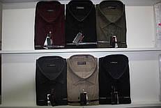 Мужская батальная рубашка кашемир