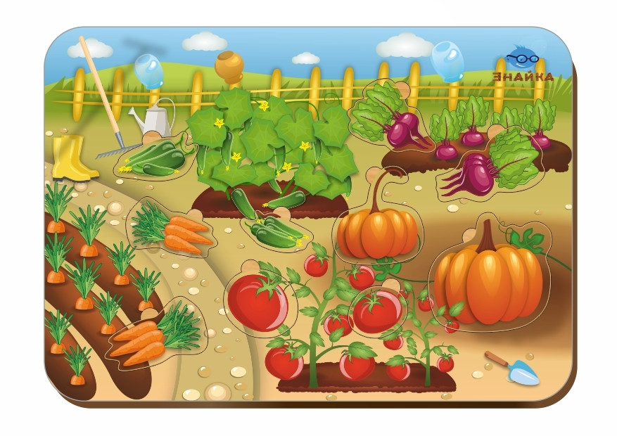 Деревянный вкладыш «Овощи»