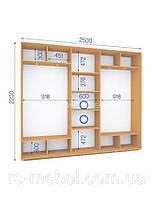 Шкаф купе (2200/2500/450), 3 двери