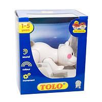 Первые друзья. Фигурка полярного медведя 87418 ТМ: Tolo