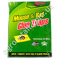 Mouse & Rat Glue Traps Клейкая ловушка для крыс
