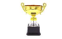 Кубок с ручками AIM B. Кубок спортивний з ручками ZR C-2176B.