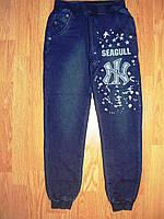 Брюки под джинс для мальчиков Seagull оптом  134-164