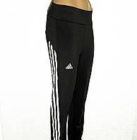 Лосины женские спорт батал черные из дайвинга (р XL-4XL), штаны спортивные в Украине, в Одессе