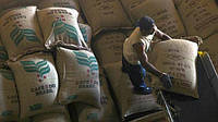 Бразилия впервые в истории вынуждена закупать кофе за рубежом