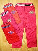 Балоневые утепленные штаны для девочек оптом, Active Sport, 98-128 рр.