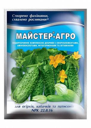 Удобрение для огурцов, кабачков и патиссонов Мастер 100 г, Киссон, фото 2