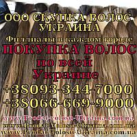 Продать волосы в Каменском Скупка волос Каменское