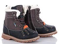 Зимняя обувь Ботинки для мальчиков от фирмы BBT(21-26)