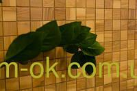 Мозаика деревянная MODEL 45 0,282х0,282 м Ясень натуральній, фото 1