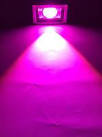 Светодиодный фитопрожектор SL-10GLens 10W IP65 (full fito spectrum led) Код.59070