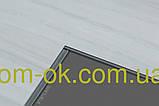 Винилам, виниловый замковой ламинат VINILAM click 4 мм 254-1 Дуб Бремен, фото 3