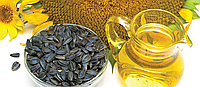 Семена подсолнечника СИ ЕКСПЕРТО (Высокоолеиновый) Clearfield®