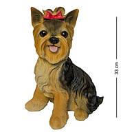 Статуэтка Собака Йорк 2308-2. Символ 2018