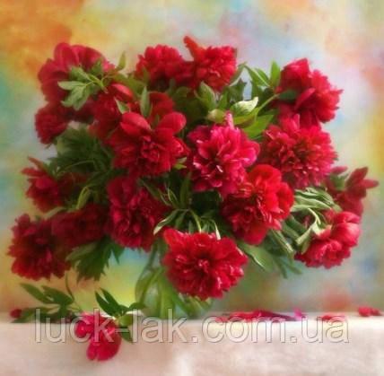 Алмазна вишивка, букет червоних півоній 30х30 см, часткова викладка