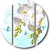 Кругла модульна картина БІЛІ ОРХІДЕЇ І МЕТЕЛИКИ з 3 частин