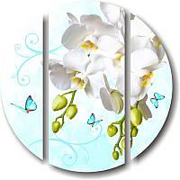 Круглая модульная картина БЕЛЫЕ ОРХИДЕИ И БАБОЧКИ из 3 частей