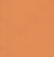 Термо ролети Арджент (помаранчевий), фото 3