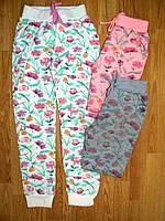 Спортивные брюки на девочку оптом, Glo-story, 116 рр