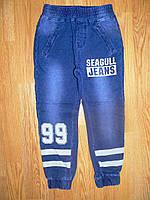 Брюки под джинс для мальчиков Seagull оптом  116-146