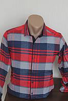 Мужская рубашка Paul Semih клетка, кашимир,  длинный рукав