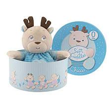 Мягкая игрушка Плюшевый Teddy Chicco 74942