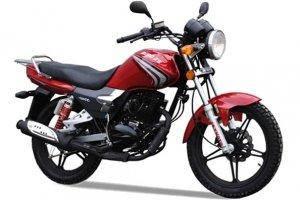 Мотоцикл SKYMOTO Bird X5 150, фото 2