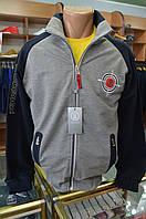 42-Мужской спортивный костюм серый- 2018.Paul Shark, фото 1