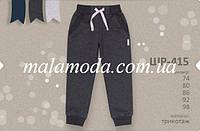 Бембі. Основний каталог. Штани. Штани для хлопчика ШР415 (трикотаж) розміри  74,80,86,92,98